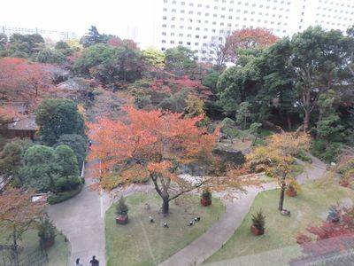 両親と東京へ_f0012059_20214228.jpg