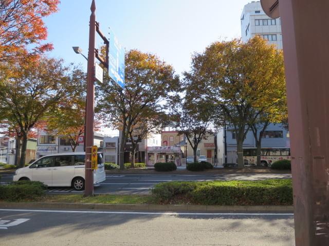 和歌山市内、日常の紅葉_c0001670_21114920.jpg