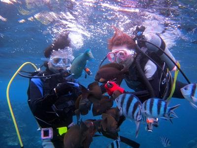体験ダイビングで青の洞窟へ!_a0156273_151195.jpg