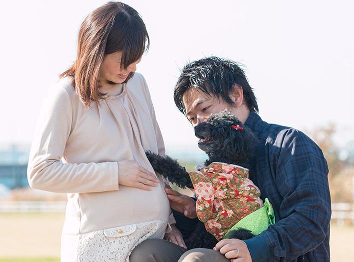 マタニティフォト with Dog !_d0164190_21142326.jpg