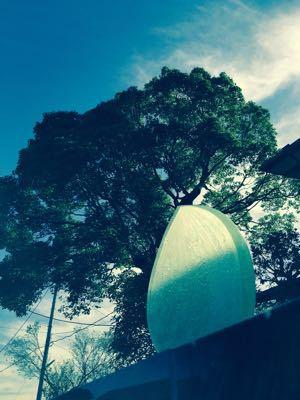 正蓮寺の新しい墓地「はすのさと」_b0188106_23153569.jpg