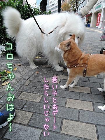 【モラタメ】 アップウォーク_c0062832_10251875.jpg