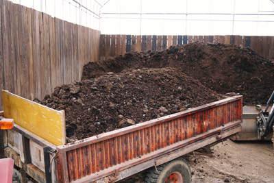 熊本ぶどう 社方園 貯蔵用分を蓄えさせるためのお礼肥え(基肥)散布作業 その1_a0254656_1742797.jpg