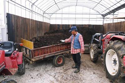 熊本ぶどう 社方園 貯蔵用分を蓄えさせるためのお礼肥え(基肥)散布作業 その1_a0254656_1750947.jpg