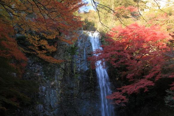 2014年 11月 箕面大滝!_d0202264_16391719.jpg