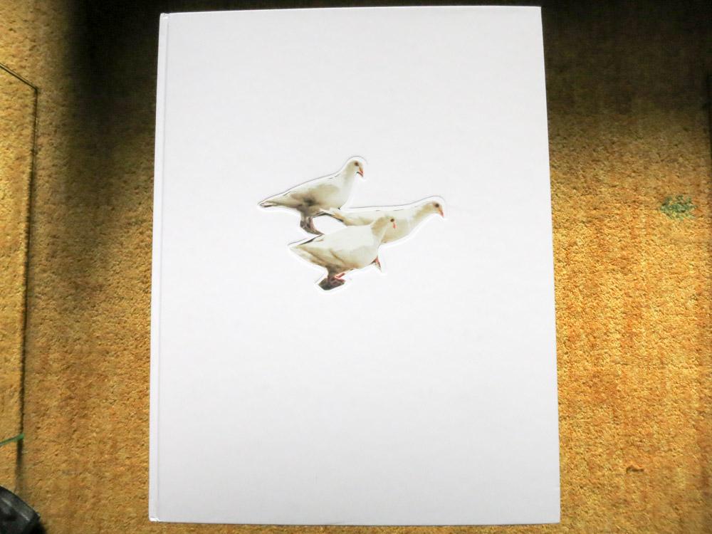 Carolyn Drake 「Wild Pigeon」_c0016177_1251145.jpg