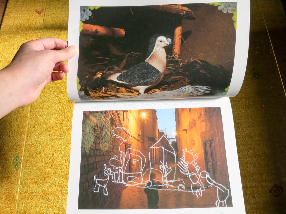 Carolyn Drake 「Wild Pigeon」_c0016177_12515315.jpg
