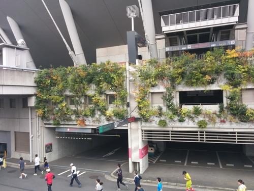 京王駅伝フェスティバル2014@味の素スタジアムとプロペラカフェで飛行機堪能_e0123104_792492.jpg