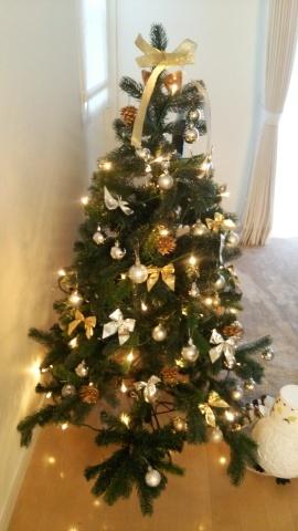クリスマス会まで…_a0150507_11505120.jpg