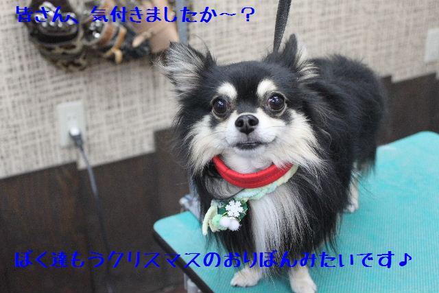 号泣_b0130018_16464026.jpg