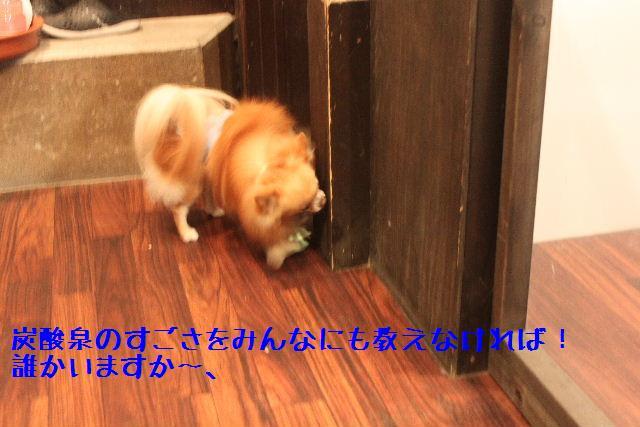 号泣_b0130018_16514817.jpg