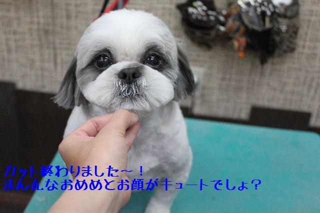 号泣_b0130018_1732935.jpg
