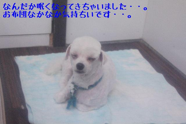 号泣_b0130018_1761592.jpg