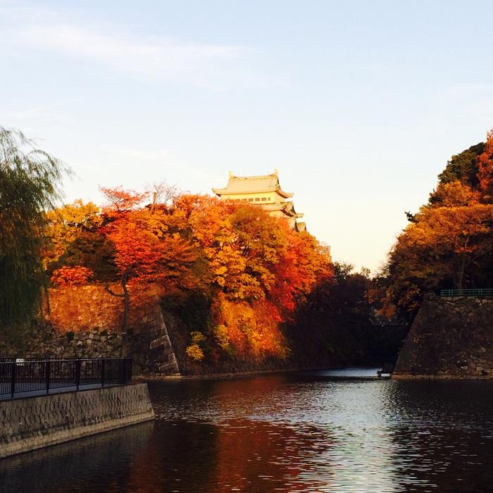 名古屋 Westin Hotel で、お散歩と 会食_f0062122_0221051.jpg