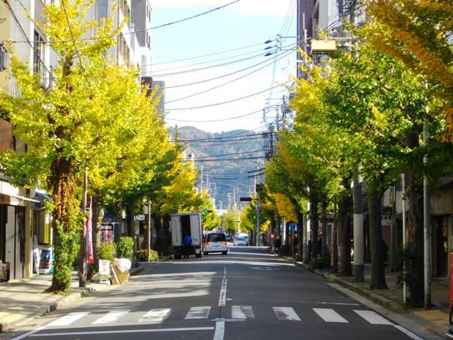 秋の二条寺町通りを東へ望む_e0230141_10204596.jpg
