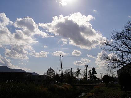 FRI  28  NOVEMBER  2014_a0099744_192370.jpg