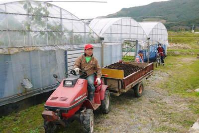 熊本ぶどう 社方園 貯蔵用分を蓄えさせるためのお礼肥え(基肥)散布作業 その2_a0254656_1926487.jpg