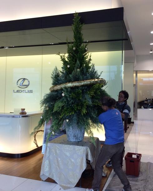 レクサス宮崎・・・今年のクリスマスツリー・・・_b0137969_17524259.jpg