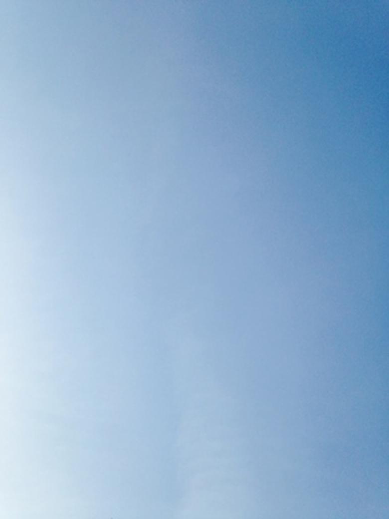 スピリチャルカウンセラー ホワイトクロウのワンネス日記 ☆「静寂」の効用♪☆_a0110270_16183380.jpg