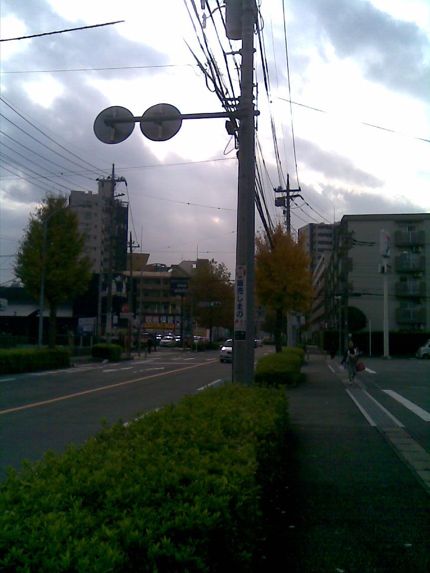 本日も小春日和、海江田が北朝霞駅前に_d0061678_22183964.jpg
