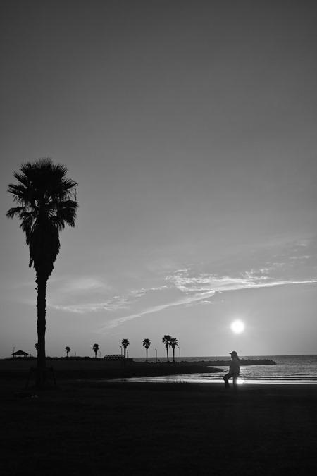 モノクロ夕陽_d0116804_10001715.jpg