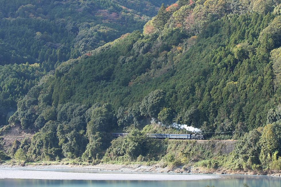 晩秋の日射し - 大井川鐵道 -  _b0190710_16404675.jpg