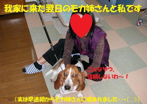 f0121712_16175324.jpg