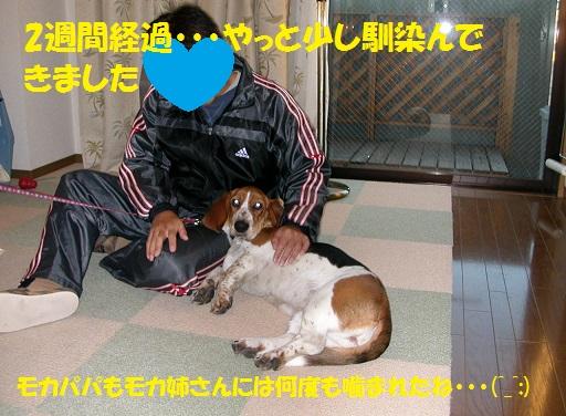 f0121712_16195463.jpg