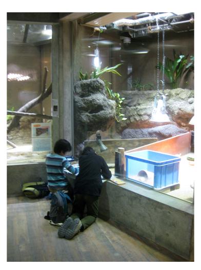 動物園にいって・小学生クラス_f0211514_1850244.jpg