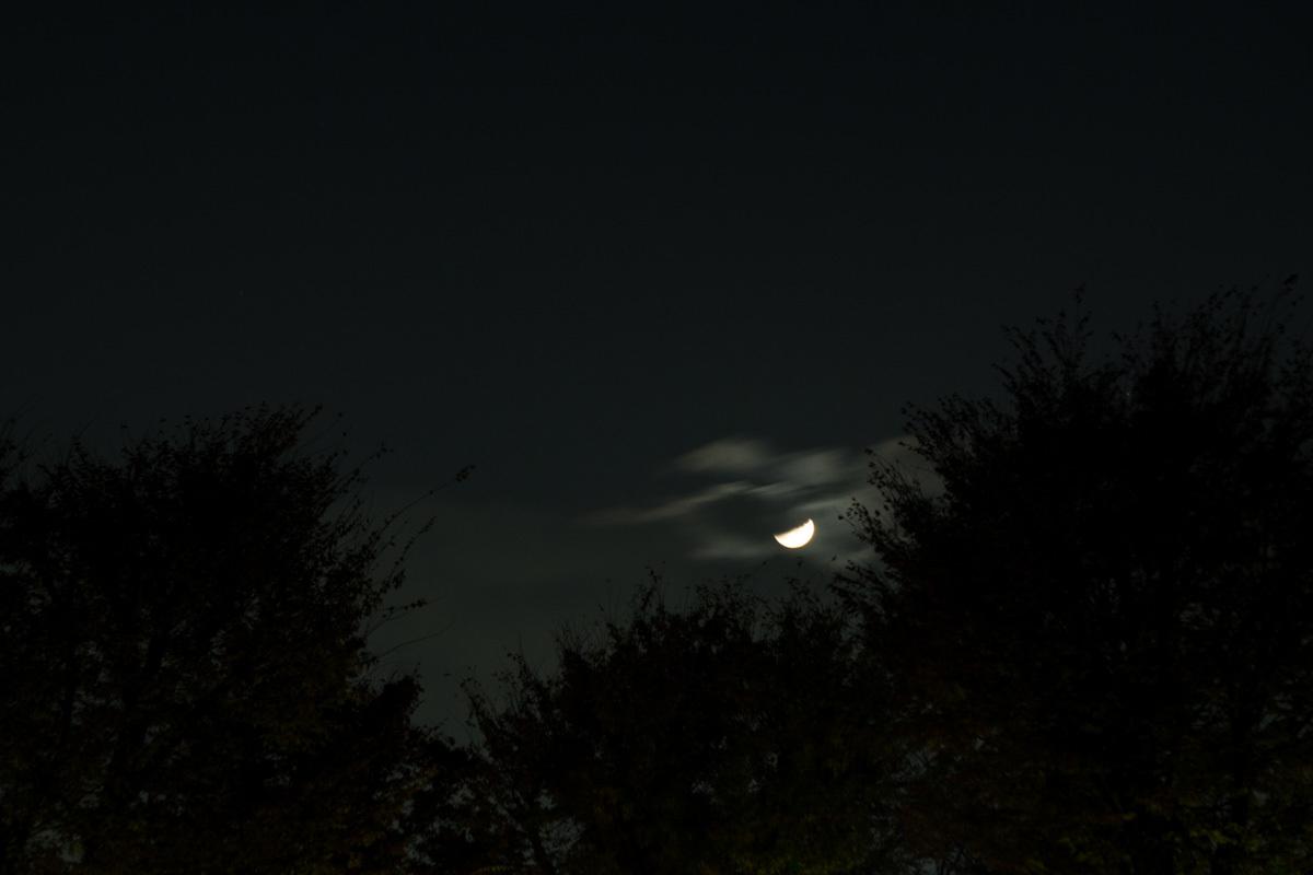 雲間から_d0192516_11494583.jpg