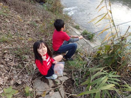 糸島 タナゴ散策~♪_a0315918_18491390.jpg