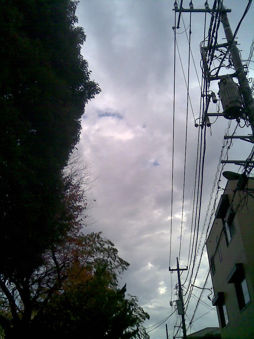 雨のち快晴って珍しい_d0061678_2175095.jpg