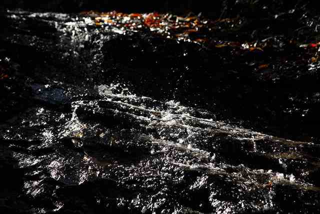 粟又の滝2_e0305388_08081500.jpg