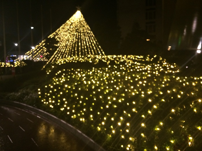 銀座だ〜  おもてなしを買う、クリスマスを楽しむ_f0062122_1481130.jpg