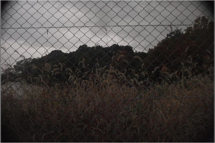 b0226423_1937160.jpg