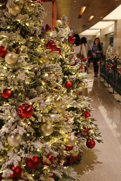 クリスマスライツ@2014香港旅行_c0024729_20023547.jpg