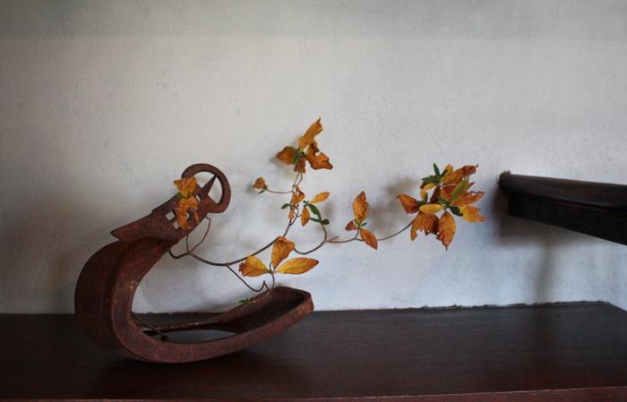 花と片羽なもの 2_d0210537_12562056.jpg