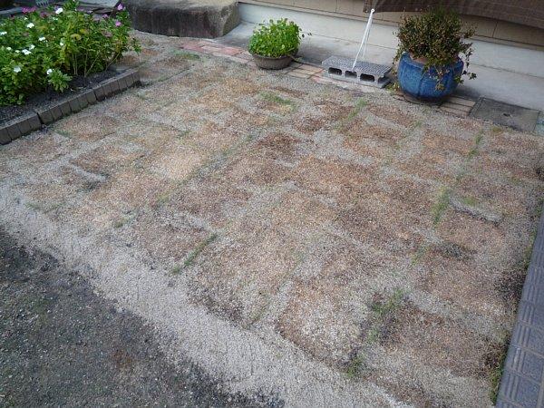 2014年11月30日 庭の芝張り作業 ③_b0341140_1325044.jpg