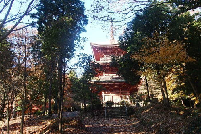 中山大杣池と石峯寺_b0227552_15164370.jpg