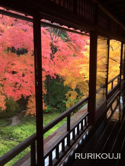そして京都へ_e0158653_2322587.jpg