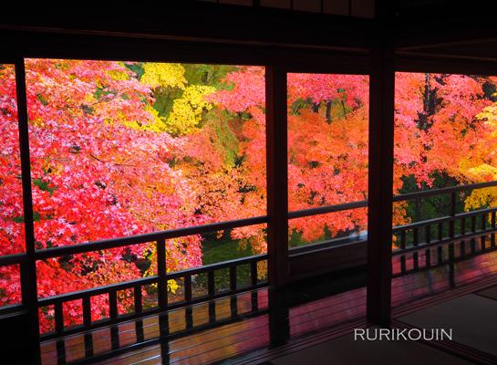 そして京都へ_e0158653_243248.jpg