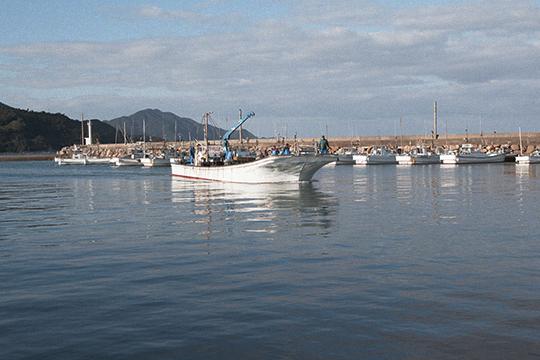 朝の漁港_d0159062_22382502.jpg