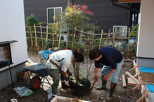 ■植栽工事■_e0188083_22461078.jpg