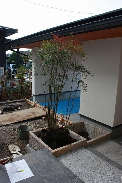 ■植栽工事■_e0188083_22461988.jpg