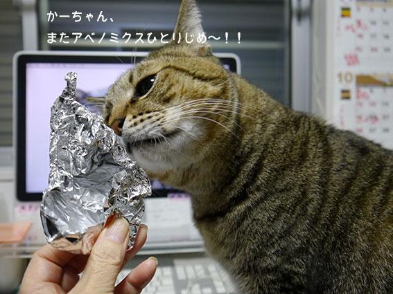 ご寄付ありがとうございます&1周年の富士山_d0071596_20172525.jpg