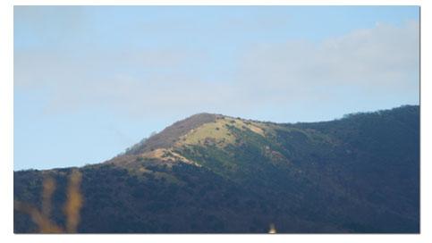 箱根 明神ヶ岳へ_c0051105_23422113.jpg