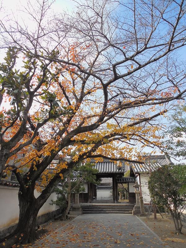 奈良の世界遺産、元興寺_d0116009_11523294.jpg