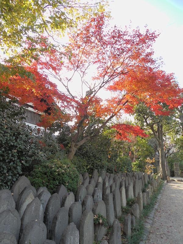 奈良の世界遺産、元興寺_d0116009_129373.jpg
