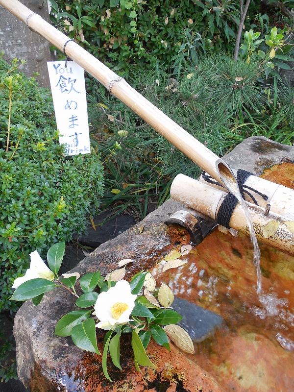 奈良の世界遺産、元興寺_d0116009_1294067.jpg