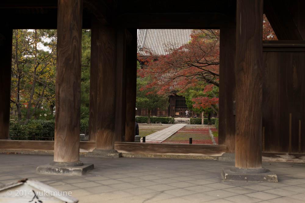 京都 建仁寺_d0192712_19462746.jpg